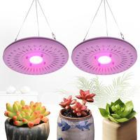 COB LED Grow Light 50W Full Spectrum Indoor Plants Flowers Growing Lamp Waterproof IP67 for Vegetable Flower Indoor Hydroponic