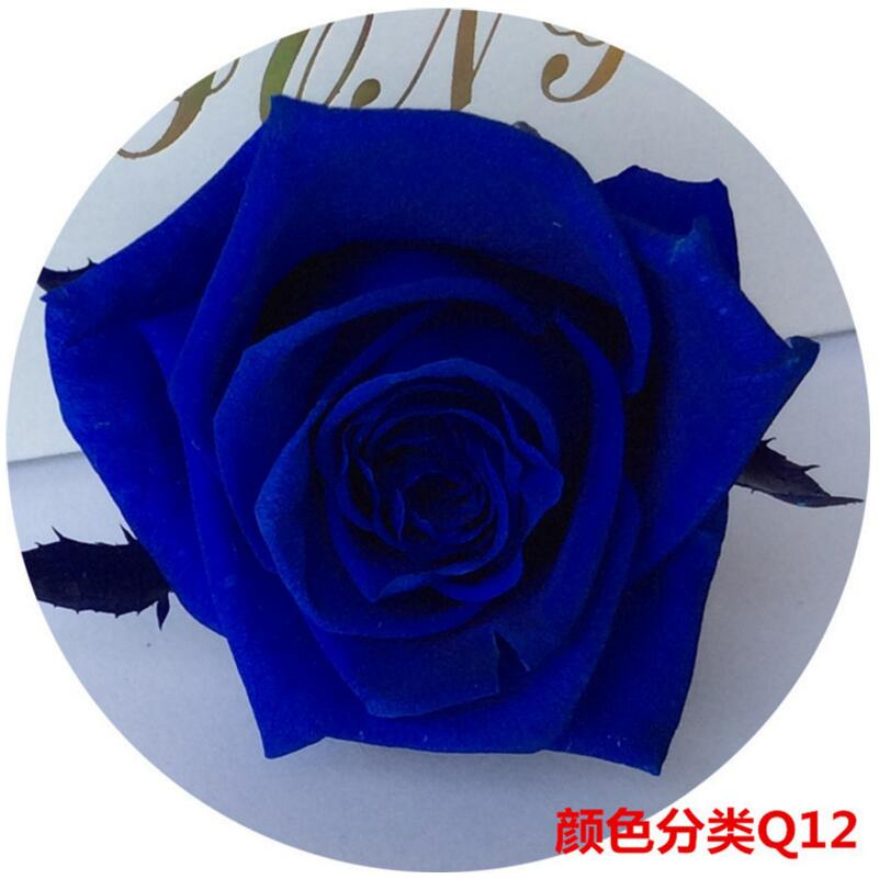 24pcs 2-3cm sačuvana cvijet ruža bud glavu za vjenčanje party - Za blagdane i zabave - Foto 6