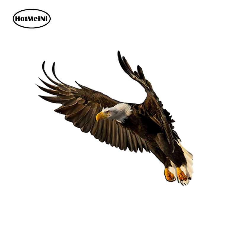 Flying-Eagle-Decal