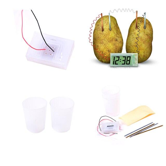 Novo material educacional diy para crianças crianças relógio de batata romance verde ciência projeto experimento kit laboratório brinquedo da escola em casa