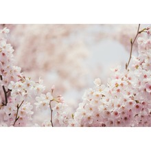 Spring Blooming Flower Cherry Light Bokeh Newborn Portrait Scenic Photo Backgrounds Photography Backdrops Photocall Photo Studio 10x10ft 3x3m scenic muslin backgrounds photography photo studio backdrops hand painted flower muslin backdrop wedding