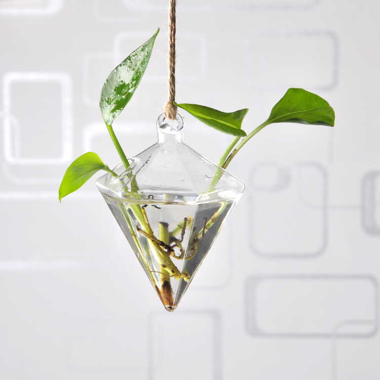 Hanging Vase Hanging Terrarium Hanging Glass Planter Clear