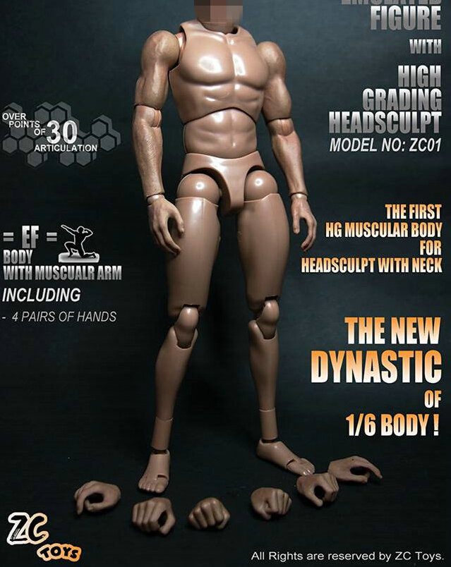 ZYTOYS 1//6 Narrow Shoulder Male Body Action Figure Fit Hot Toys Phicen Doll Head