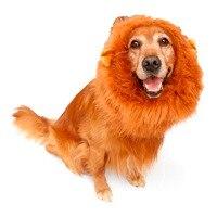 Funny Stuffed Plush Lion Head Circumference Hat Pet Costume Cosplay Lion Mane Cap Hat Doggy Lion