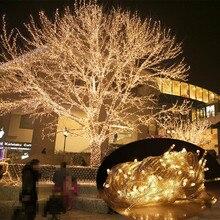 10M 20M 30M 50M 100M LED guirlande lumineuse vacances Patio noël fête mariage décoration AC 220 V/110 V extérieur guirlande lumineuse