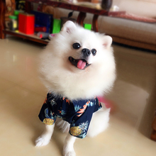 Spring & Summer dog clothes