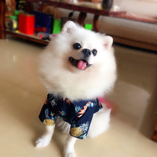 Cotton Floral Printed Half-Sleeved Dog Shirts
