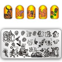 New Arrival Squirrel and Pine nuts Pattern Nail Art Stamping Stamp Template Plates Beauty Stencil Tools For ZJOY-019
