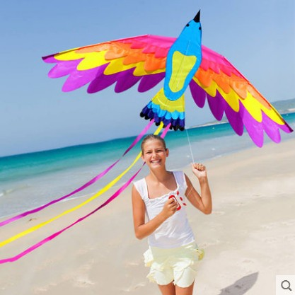 New High Quality Outdoor Fun Sports Kites For Kids And Adults Large Easy Flyer Bird Kites With String And Handle
