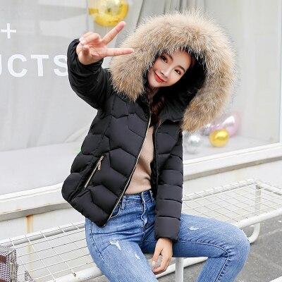 acc808326131 Hot  Fashion Winter Jacket Women 2018 Korean Hooded Coat Parka Women Black  Plus size Women Down Jacket Pink Casual Feminino Jaqueta-in Parkas from  Women s ...