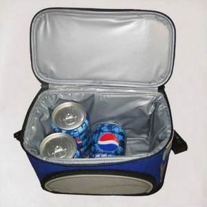 CBJ car Refrigerators colorful cooler box pvc material can keep drink warm