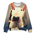 Alisister Dog Bull Terrier Hoodie 3D Printed Hoodies Men Women Funny Sweatshirt Animal Movie Mens Clothing Streetwear Pillover