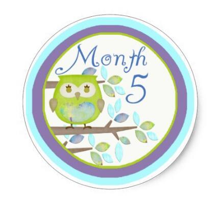1.5inch Tree Owl Milestone Month 5 Classic Round Sticker