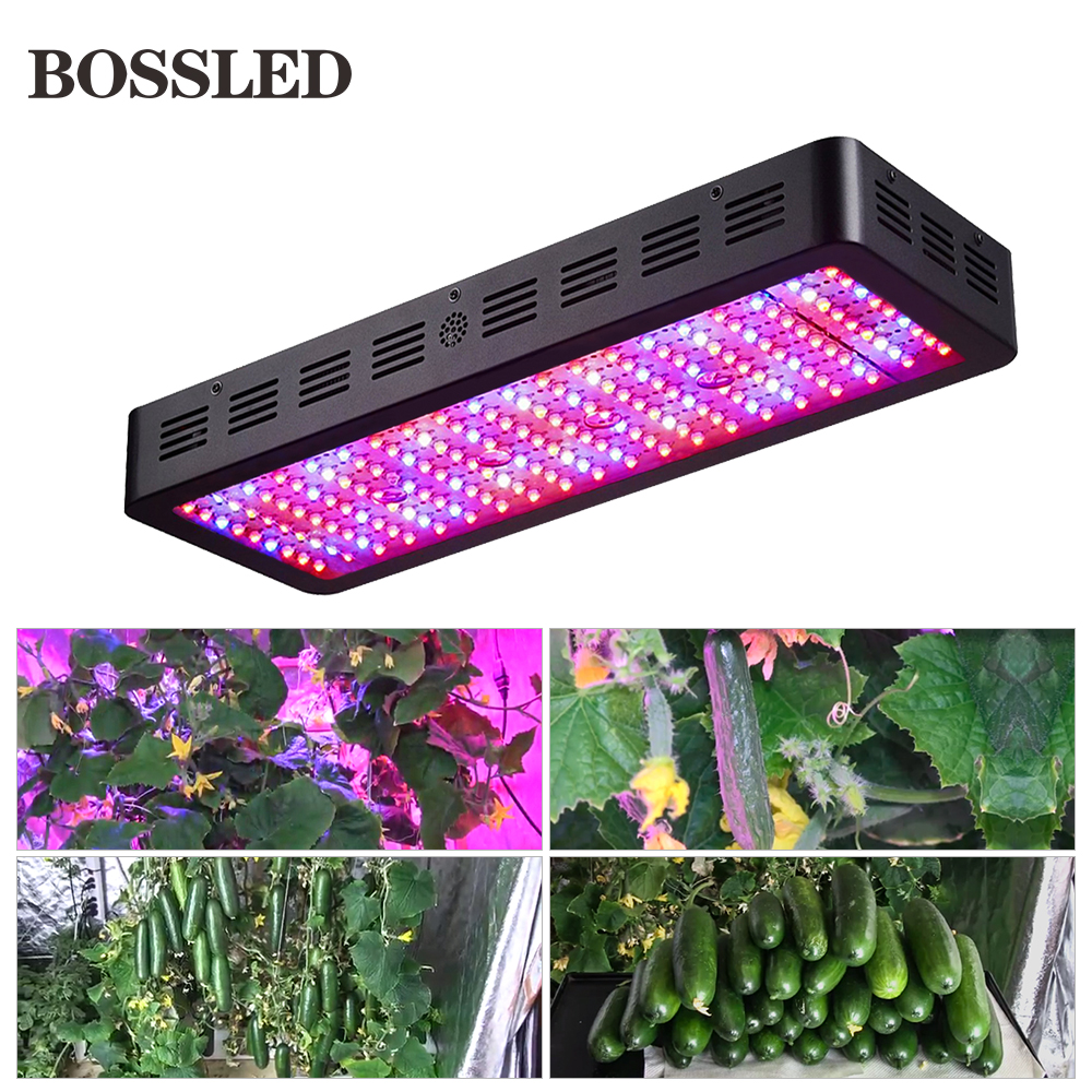 BOSSLED 2000W led grow light lamps full spectrum for indoor plants growth greenhouse hydroponics system led grow light grow led jiernuo led grow light 600w mini lamps for plants grow led full spectrum fitolampa for greenhouse hydroponics system aquarium