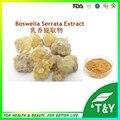 Alta Qualidade Extrato de Olíbano/Serrata Boswelia Extrato em pó 100 g/lote