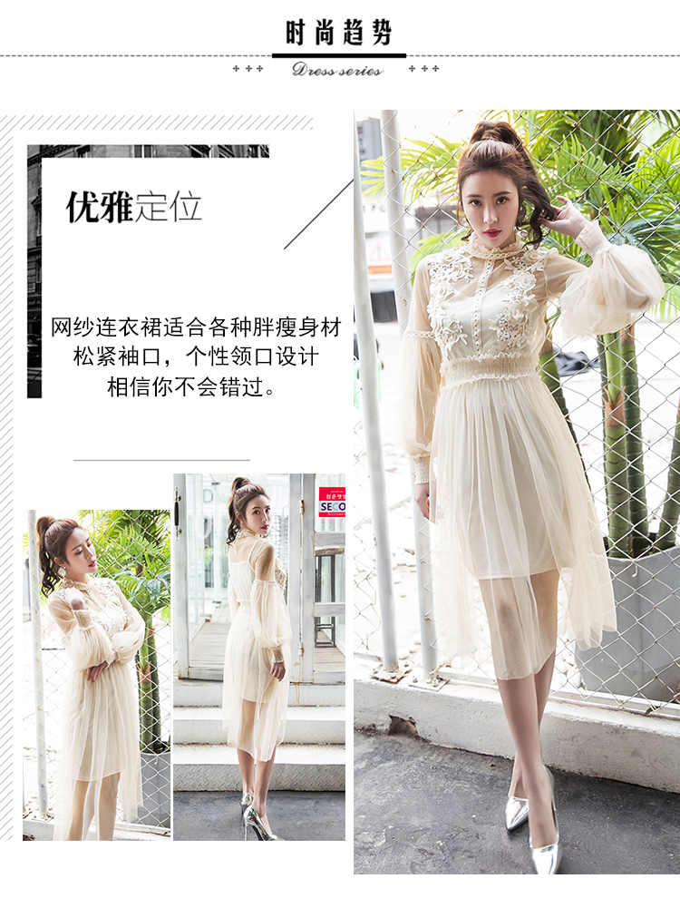 19 New Women Fashion Dress Stand Collar Lantern Sleeve Mesh Dress See-through Lace Embroidery Fairy Dress Femme Vestidos Robe 2