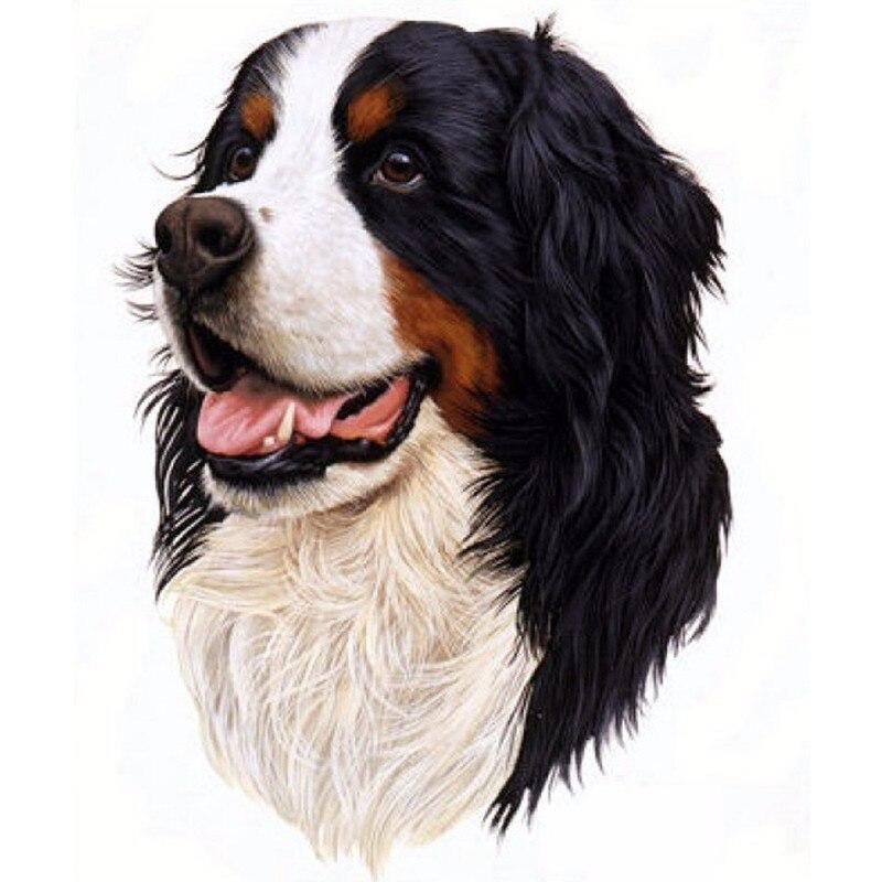 Online kopen Wholesale berner honden uit China berner