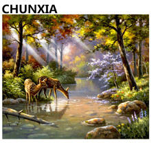 CHUNXIA Painting By Numbers DIY Framed Oil Paint Pictures Wall Art Home Decor Unique Gift 949(China)