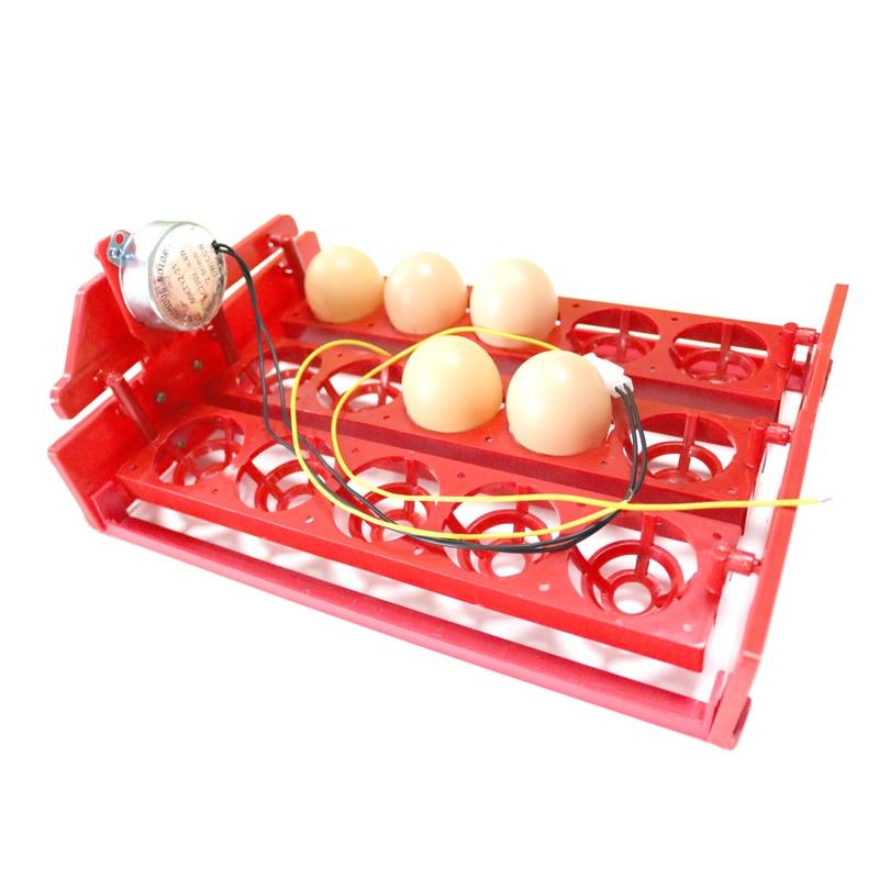 15 Eggs Incubator Egg Tray 3 * 5 Holes Automatic Incubator Egg Tray Automatically Turn The Eggs Poultry Incubation Equipment