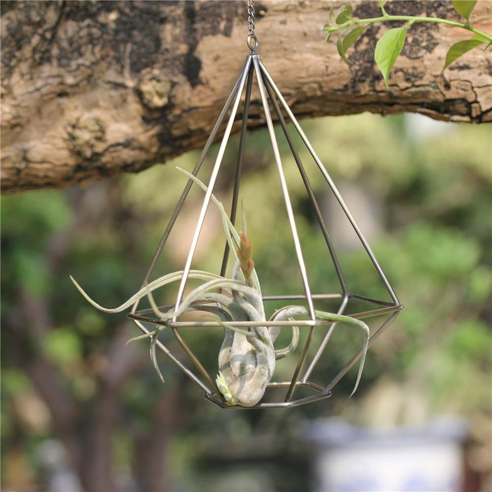 Ρουστίκ στυλ κοίλο freestanding κρεμαστό μεταλλικό σχήμα διαμαντιού σχήμα Tillandsia αέρα εργοστάσιο Rack γεωμετρική Himmeli αέρα φυτών κάτοχος δοχείο