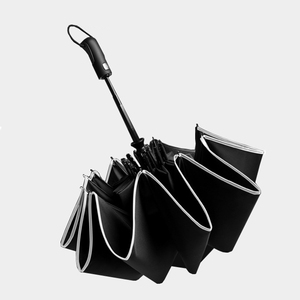 Image 2 - Parapluie pliant automatique 10 côtes