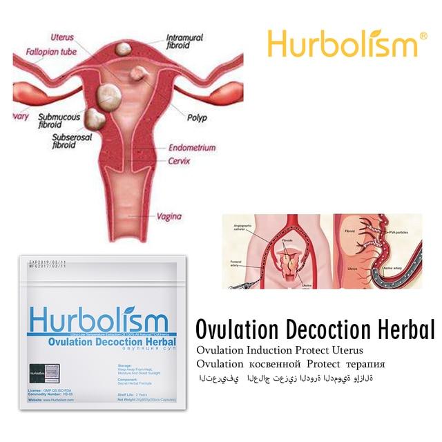 7ff10fd7c Hurbolism nueva fórmula ovulación decocción