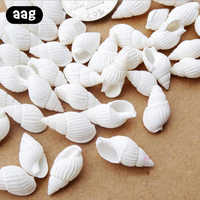 50/100PCS Natural conch shell Aquarium decoration mini Sea Beach Shell Conch Seashells DIY Crafts for party Home decor white
