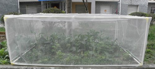 Popular Vegetable Garden Netting Buy Cheap Vegetable Garden