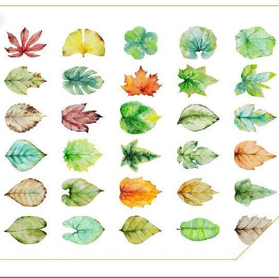 30pcs/lot New leaves design postcards Nice Stationry Greeting Cards Calendars Planner & Cards