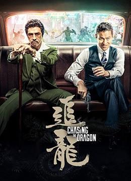 《追龙》2017年香港,中国大陆动作,犯罪电影在线观看