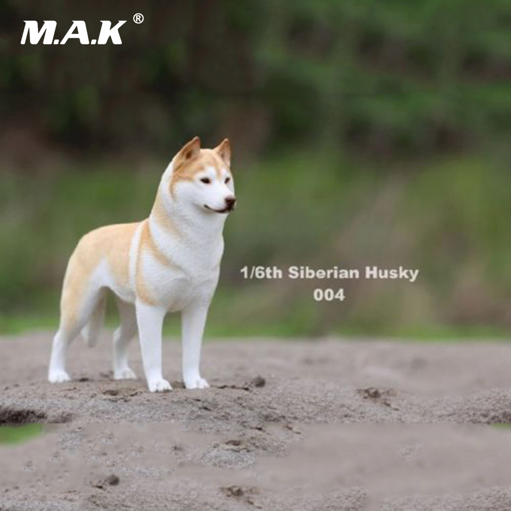 In stock 1/6 Scale Action Figure Accessory Siberian Husky Simulation Animals 004 Pet Dog Model Toys for 12'' Action Figure creative sled dog bulldog model pinata toys pet dog piggy bank bull terrier akita dogs siberian husky dogs save money tank model
