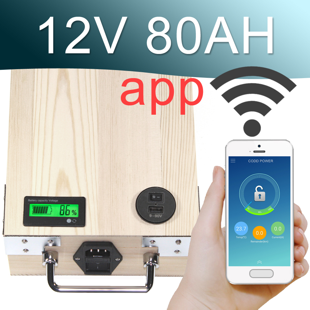 12V 80AH APP Lithium ion Electric bike Battery Phone control USB 2.0 Port Electric bicycle Scooter ebike Solar Power 1000W Wood free shipping 48v 18ah lithium battery electric bicycle scooter 48v 1000w battery lithium ion ebike battery pack akku with bms