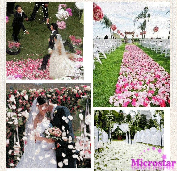2013-wedding-trends-rose-petal-aisle-runner