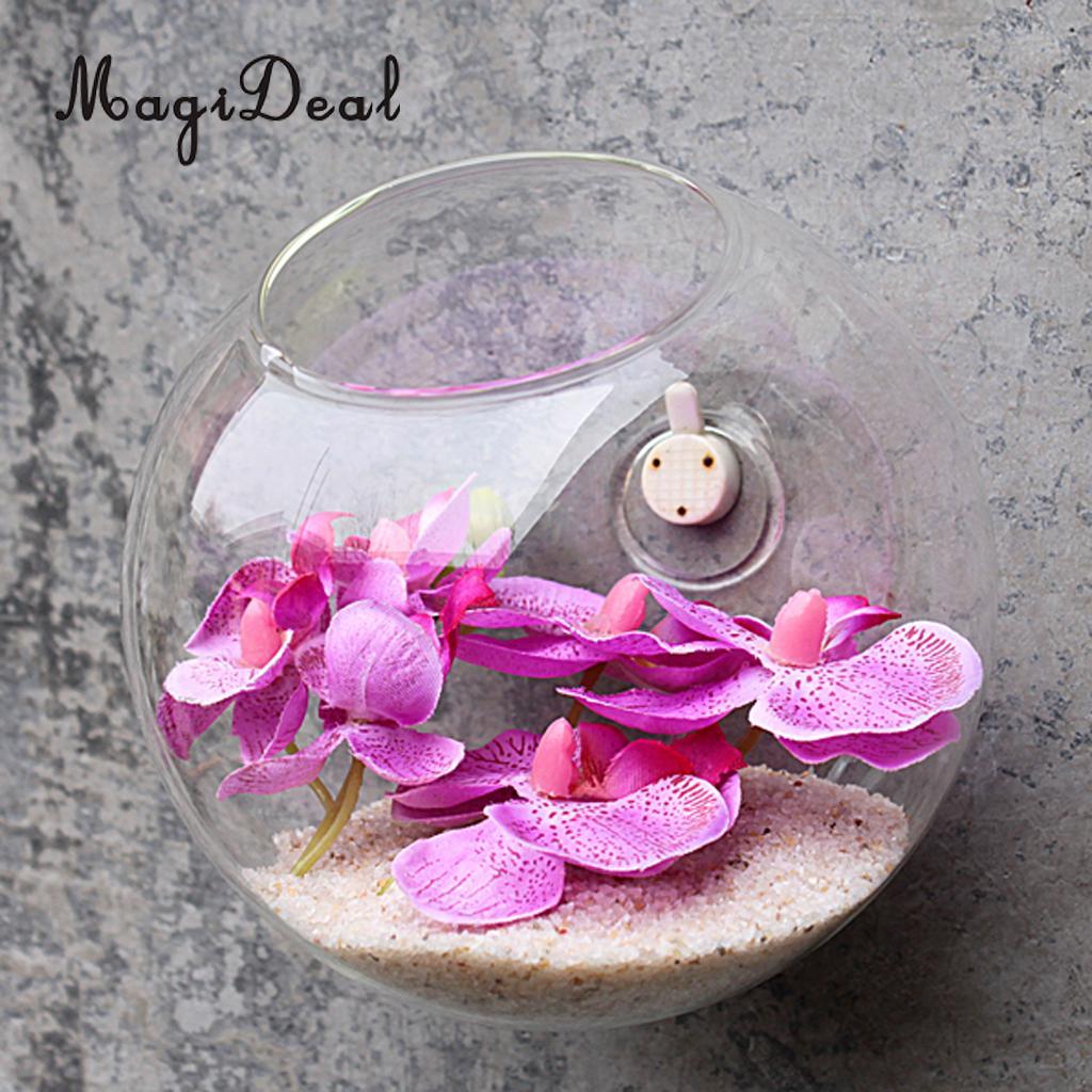 Hot Clear Glass Wall Hanging Vase Bottle for Plant Flower Terrarium ...