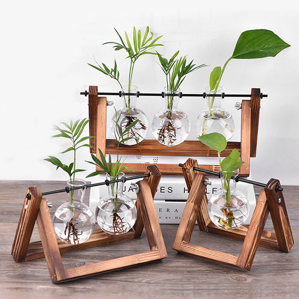 Glass Planter Vase with Retro Solid Wooden Stand