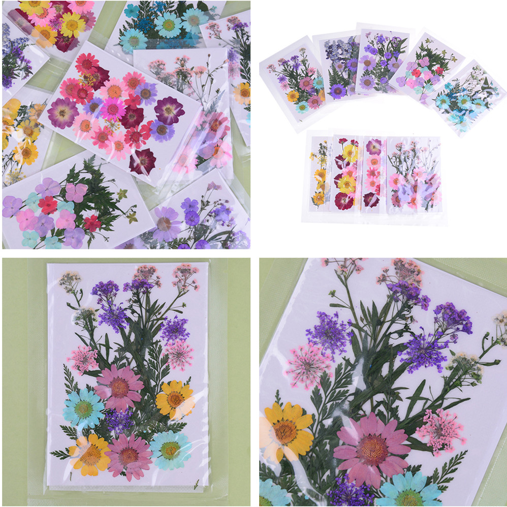 AUEAR 35 Pcs Real Natural Multiple Dried Pressed Flowers for DIY Art Crafts Decoration Resin Making