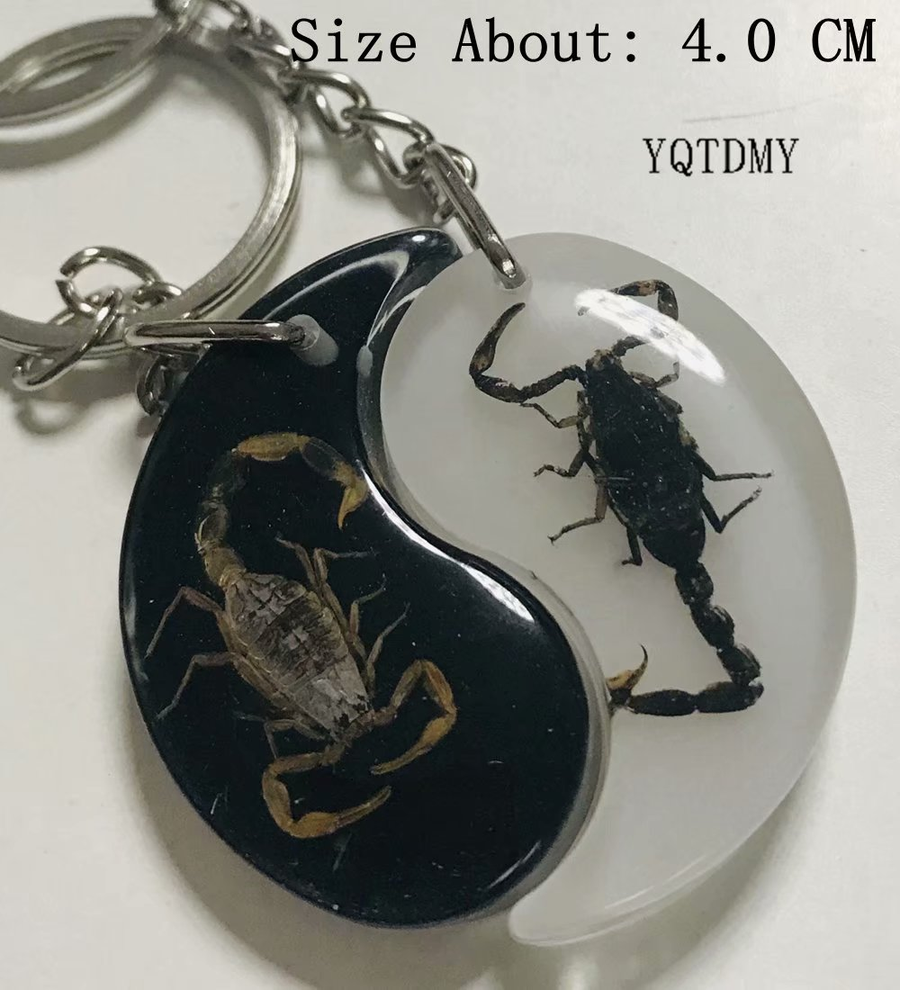 Free Shipping YQTDMY 12 PCS Golden Black Color Scorpion Specimen Embedded Fashion Taiji Keychain