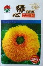 10 шт./пакет Зеленое Сердце Большой Семян Подсолнечника, оригинальной Упаковке Редкие Семена цветов Dia 18-20 см, H 1.2-1.4 м