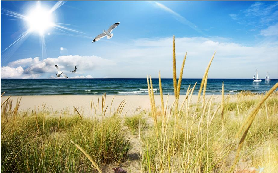 England beaches coast <b>grass</b> landscapes <b>wallpaper</b> | landscapes ...