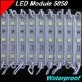 20 pçs/lote Módulos de LED SMD5050 módulo de LED À Prova D' Água IP67 DC12V 3 leds iluminação Doméstica branco Azul Vermelho Verde Amarelo levou lanternas