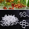 2015 * Nuevo Durable Clear 50 Unids Planta Apoyo Clips de Vid Jardín Verduras 23mm Para tipos de plantas * Colgando plástico