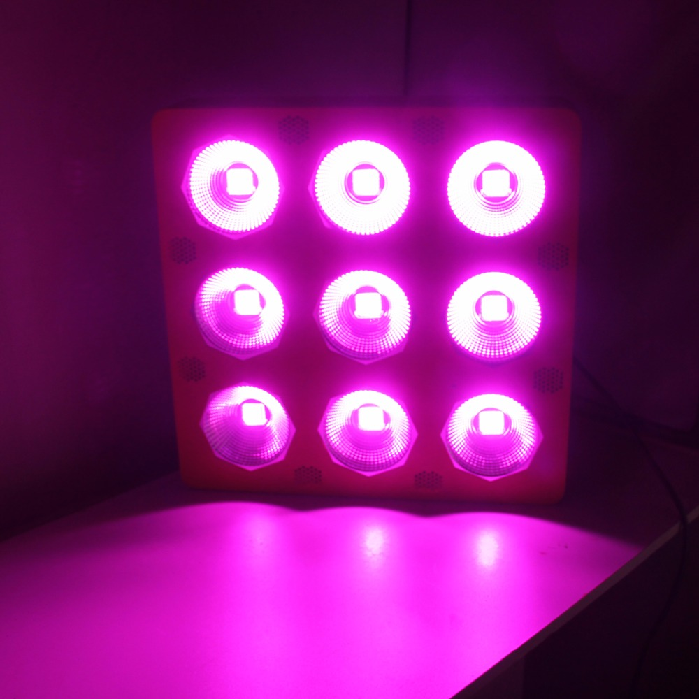 Max 9 LED plant growth lights cob 900W full spectrum panel grow led lamp cultivo indoor hidroponia system greenhouse in LED Bulbs Tubes from Lights Lighting