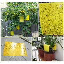 Behogar 20pcs 15 x 25cm Dual Sided Glue Sticky Traps Killer Control Board for Flying Plant Insect Mosquitoes Aphids Leafminers