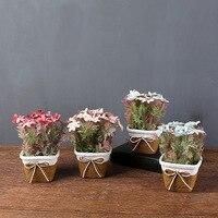 Northern Europe Simulation Calliopsis Decorations Cord Small Basin Cosmos Plastic Flower Bonsai Home Garden Decor