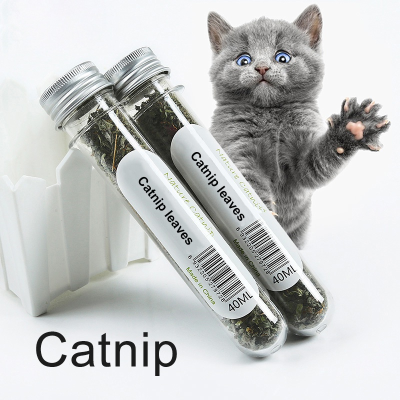 40ml Catnip Pet Health Care Depilatory Hair Removal Cleansing Mouth Natural Mint Grass Leaf Cat Spit Cat Grass Snacks Chew Stick