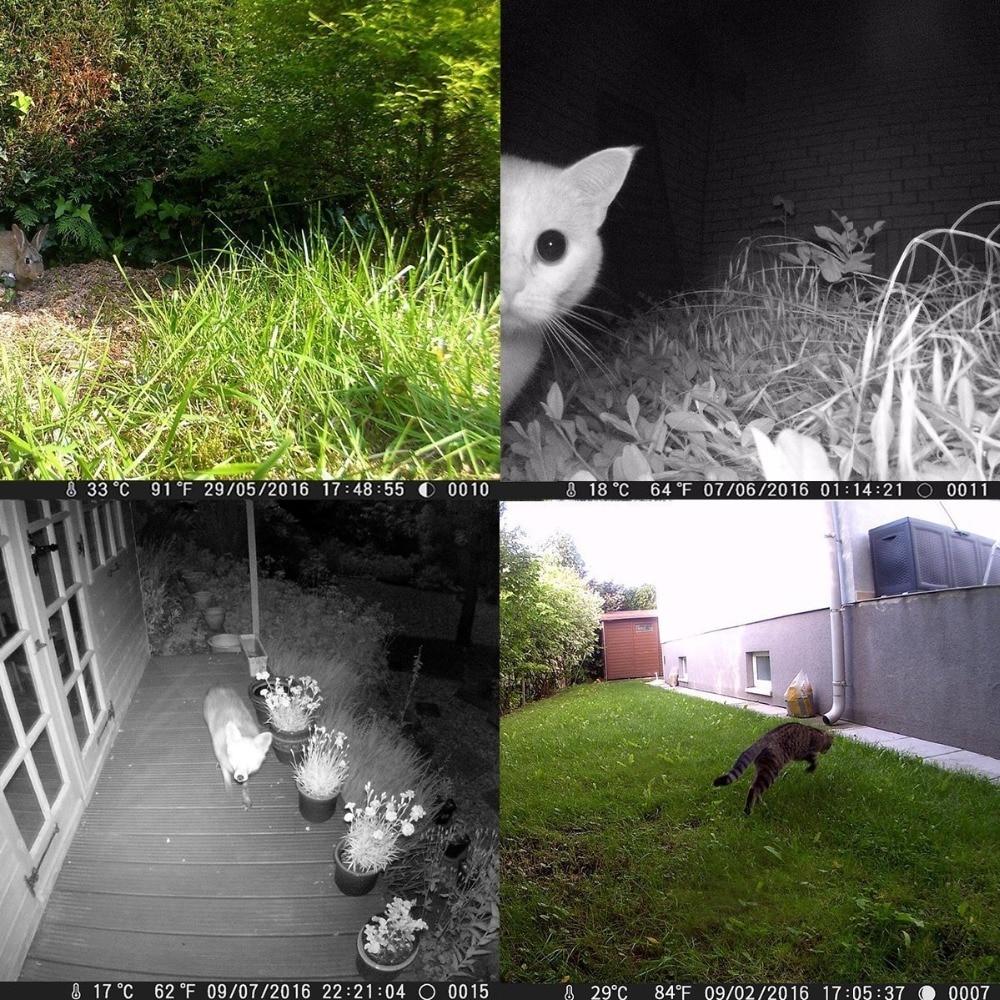 16MP Night vision 2.4LCD Hunting Wild Camera H881 Photo Trap 1080P IP56 Waterproof Infrared Trail camera 3 1