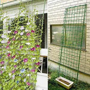 Garden Fence Netting Climbing-Frame Vegetable-Plant-Trellis Anti-Bird Millipore