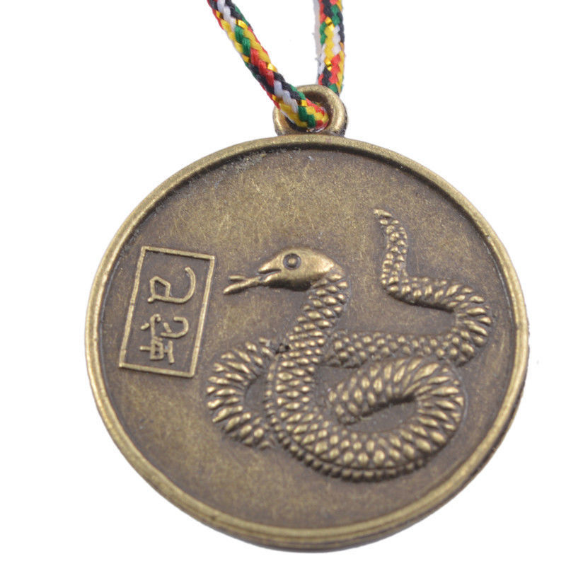 SNAKE CHINESE ZODIAC Charm Pendant Coin Lucky Feng Shui+Five Element Chain Y1091-6