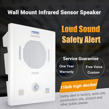 Cellphone Bluetooth Wireless Voice Replacement Motion Sensor Loudspeaker Wall Mount High Power MP3 Audio Announcement Speaker