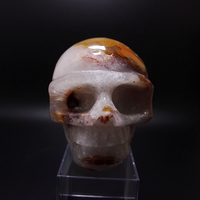 805g Natural Crystal SKULL decoration Stones and Minerals YELL0W agate through the carved by hand